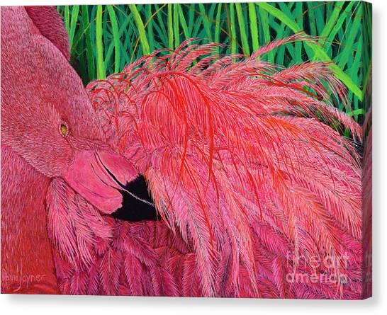 Ruffled Flamingo Canvas Print