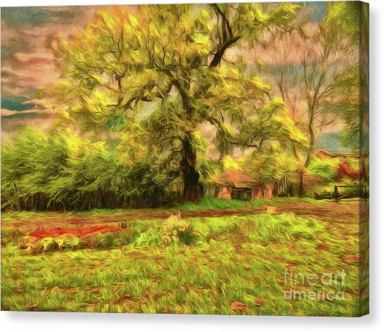 Canvas Print featuring the photograph Rural Rustic by Leigh Kemp