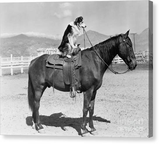 Saddle Up Canvas Print by Everett Collection