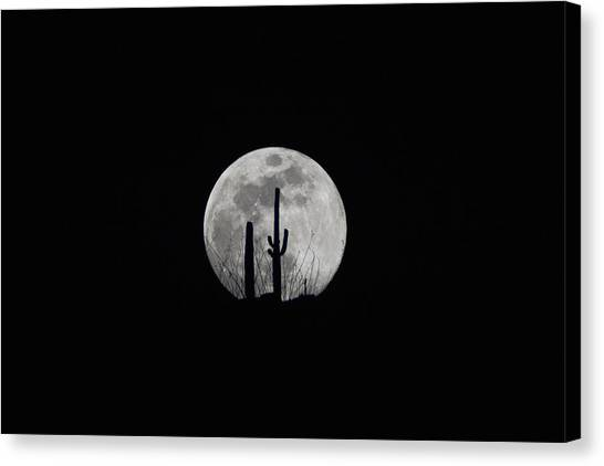 Canvas Print featuring the photograph Saguaro Moon Silhouette  by Chance Kafka