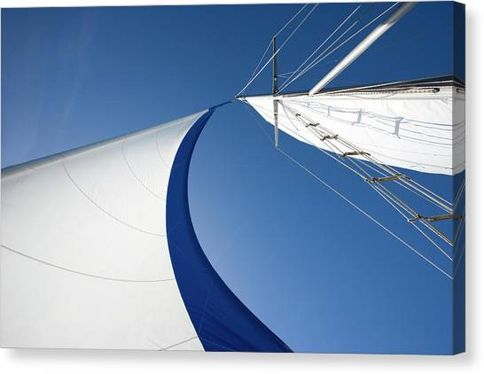 Sailing Canvas Print by Tammy616