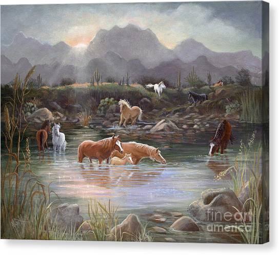 Canvas Print - Salt River Sunrise by Marilyn Smith
