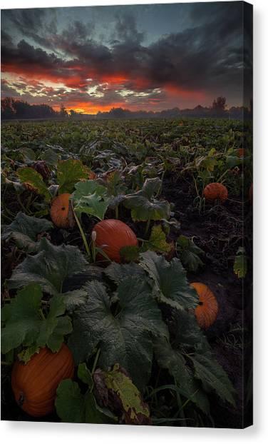 Pumpkin Patch Canvas Print - Samhain by Aaron J Groen