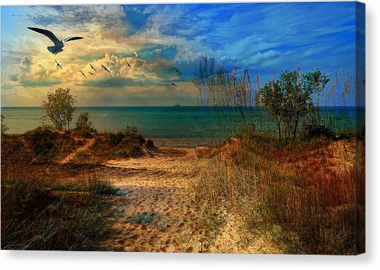 Sand Track To The Ocean At Dusk Canvas Print