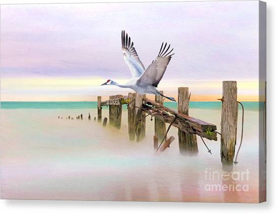 Sandhill Crane Canvas Print - Sandhill Crane And Old Dock by Laura D Young