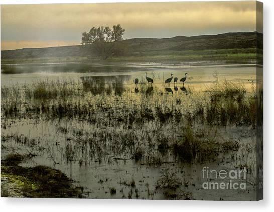 Sandhill Serenity Canvas Print
