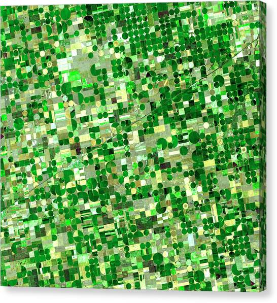 Satellite View Of Crop Circles In Canvas Print by Education Images