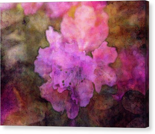 Saturation 9041 Idp_2 Canvas Print