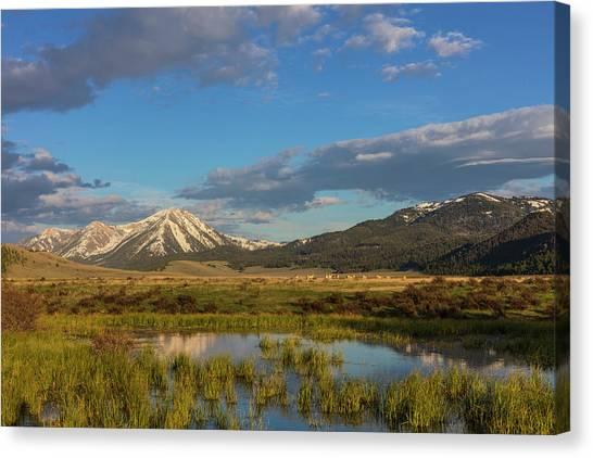 Centennial Canvas Print - Sawtell Peak Reflects In Wetlands by Chuck Haney
