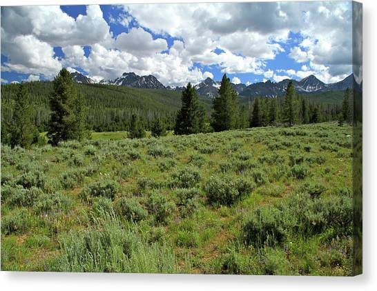 Sawtooth Range Crooked Creek Canvas Print