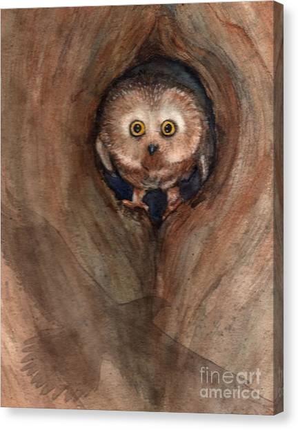 Scardy Owl Canvas Print