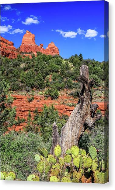 Schnebly Hill View, Sedona Canvas Print