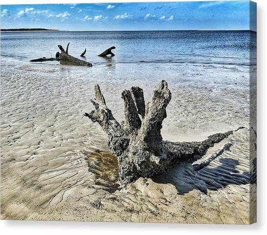 Sculpted By The Sea Canvas Print