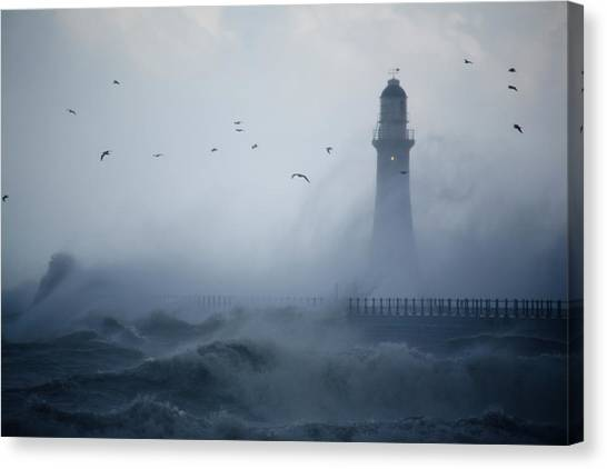 Sunderland Canvas Print - Sea Gulls Fly As Waves Hit The by Roger Coulam
