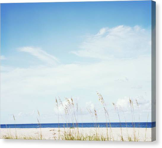 Sea Oats On Beach Canvas Print