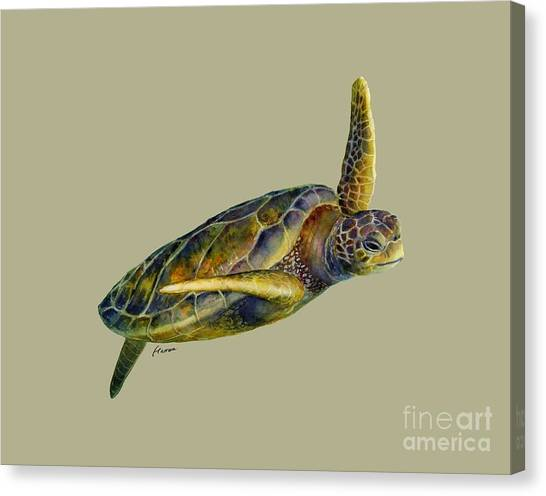 Flipper Canvas Print - Sea Turtle 2 - Solid Background by Hailey E Herrera
