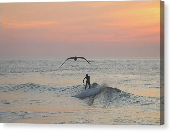Seagull And A Surfer Canvas Print