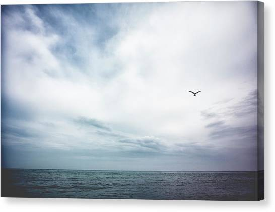 Seagull Flying Over Lake Michigan Canvas Print by Rebecca Nelson