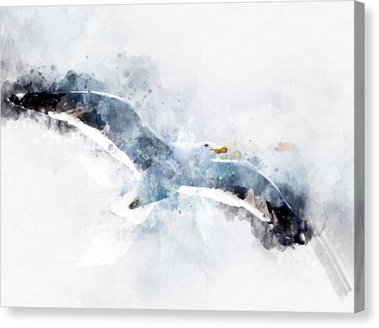 Seagull In Flight With Watercolor Effects Canvas Print