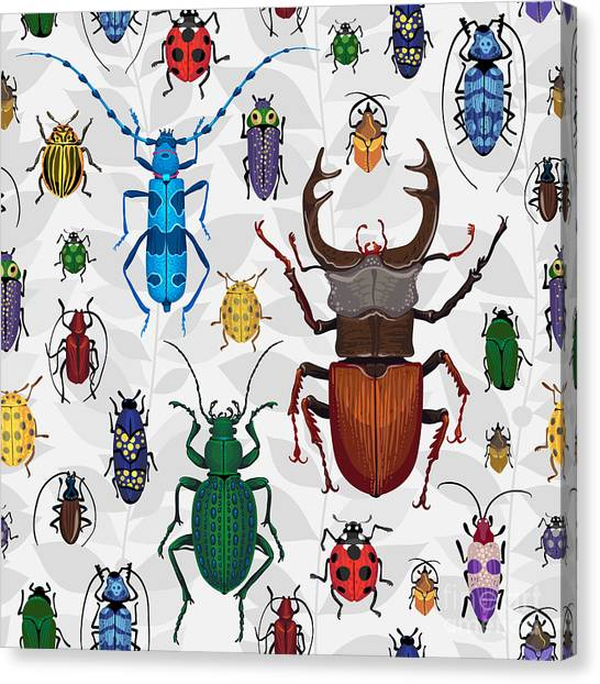 Science Education Canvas Print - Seamless Pattern With Colorful Bugs by Anna Poguliaeva