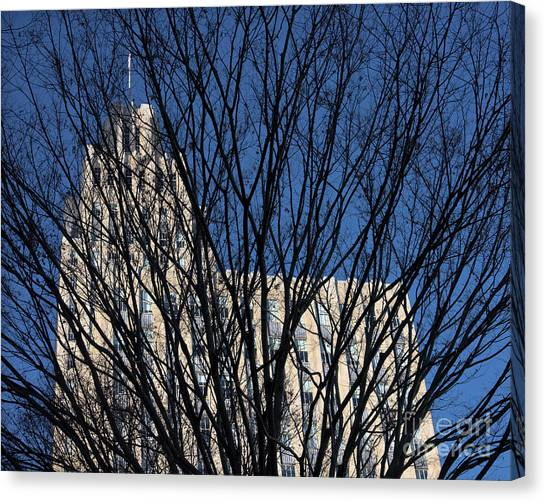 Canvas Print featuring the photograph Seasonal View C by Patrick M Lynch