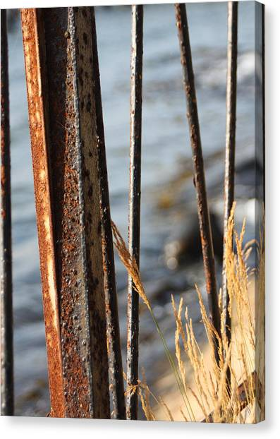 Seaview Through The Fence Canvas Print