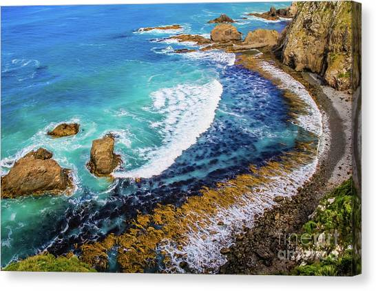 Roaring Bay At Nugget Point Canvas Print