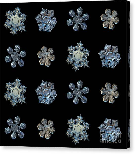 Grey Background Canvas Print - Set With Snowflakes Isolated On Black by Alexey Kljatov