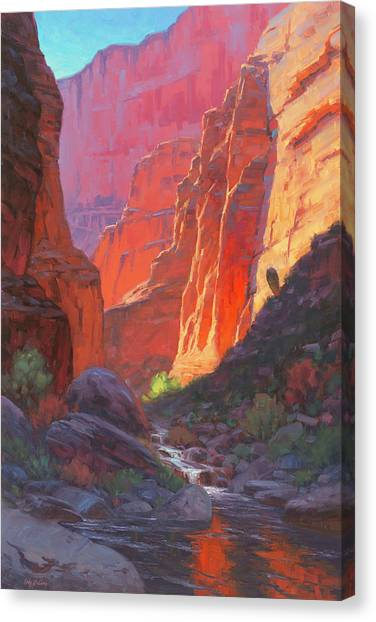 Canyon Canvas Print - Shadow Barrel  by Cody DeLong