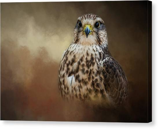 Shadow Hunter Canvas Print