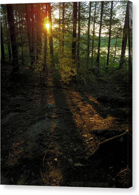 Sun Canvas Print - Shadows by Jerry LoFaro