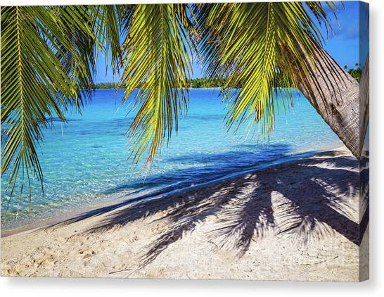 Shadows On The Beach, Takapoto, Tuamotu, French Polynesia Canvas Print