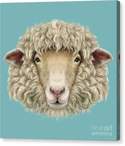 Ewe Canvas Print - Sheep Portrait. Illustrated Portrait Of by Ant art