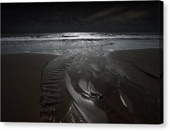 Shore Of The Cosmic Ocean Canvas Print
