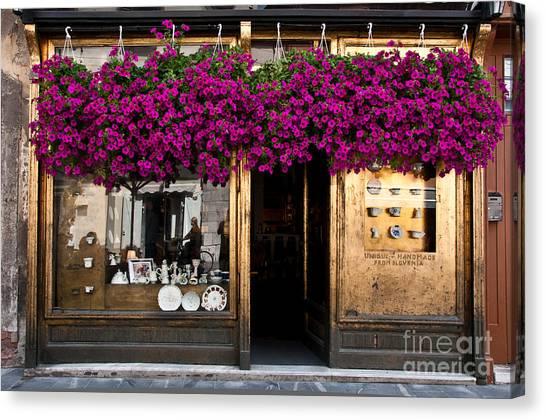 Ljubljana Canvas Print - Showcase Full Of Purple Flowers In by Cmartinezcano