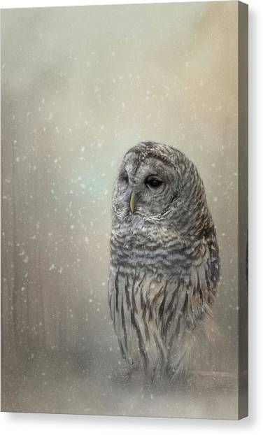 Silent Snow Fall Canvas Print