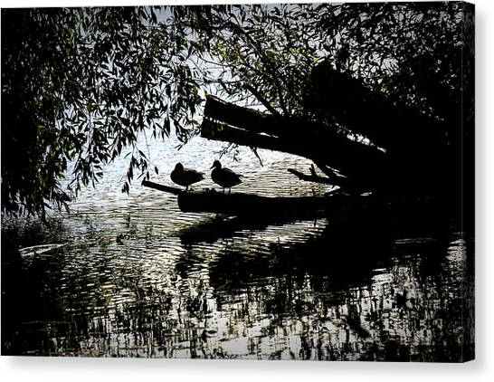 Canvas Print featuring the photograph Silhouette Ducks #h9 by Leif Sohlman