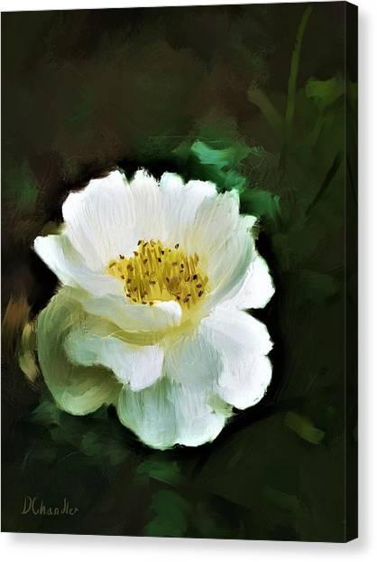 Simple Beauty Canvas Print