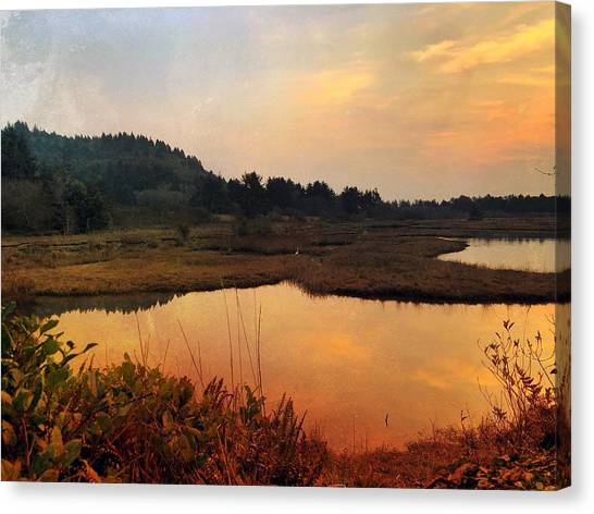 Canvas Print featuring the digital art Sitka Sedge Sand Lake Eve by Chriss Pagani