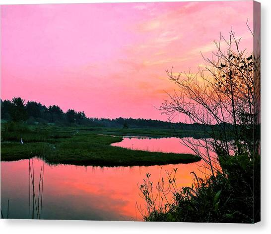 Canvas Print featuring the photograph Sitka Sedge Sunset by Chriss Pagani