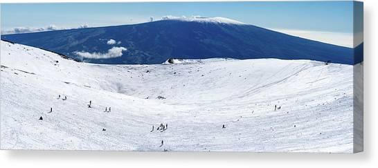 Mauna Loa Canvas Print - Sledding On Mauna Kea by Christopher Johnson