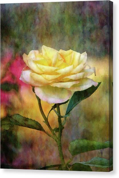 Slight Yellow 5570 Idp_2 Canvas Print