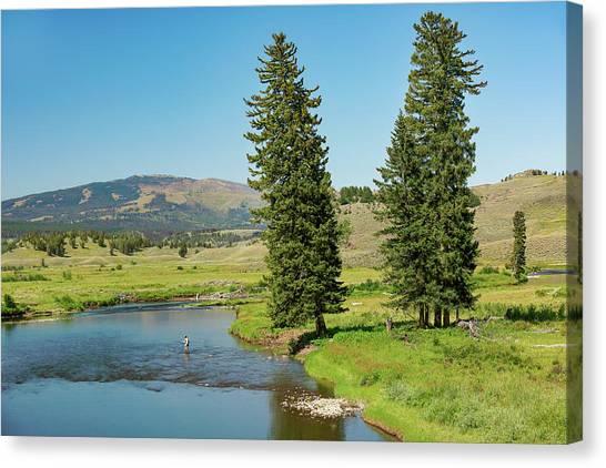 Slough Creek Canvas Print