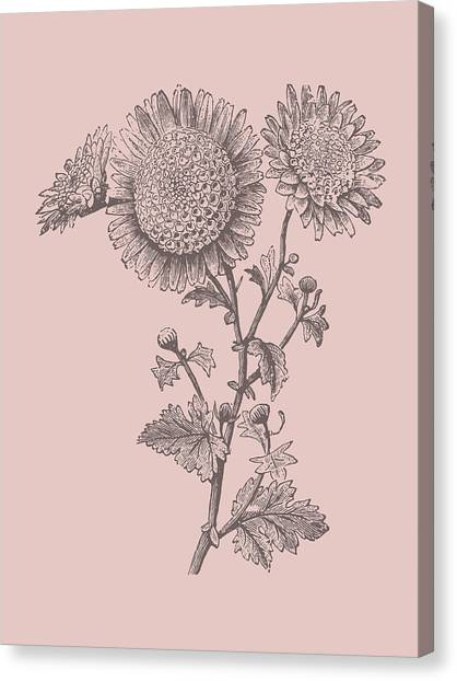 Bouquet Canvas Print - Small Anemone Blush Pink Flower by Naxart Studio