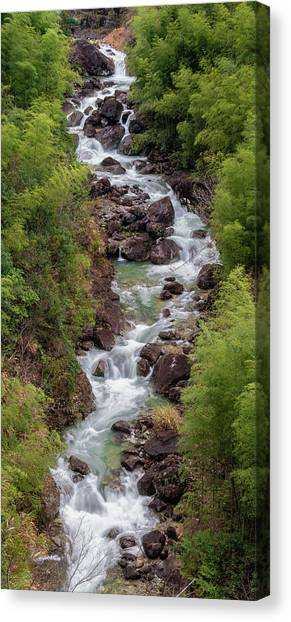 Canvas Print featuring the photograph Small Cascade 1x2 Vertical by William Dickman