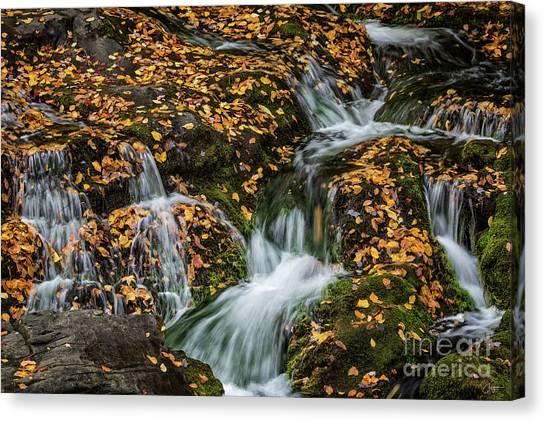 Smokey Mountain Falls Canvas Print