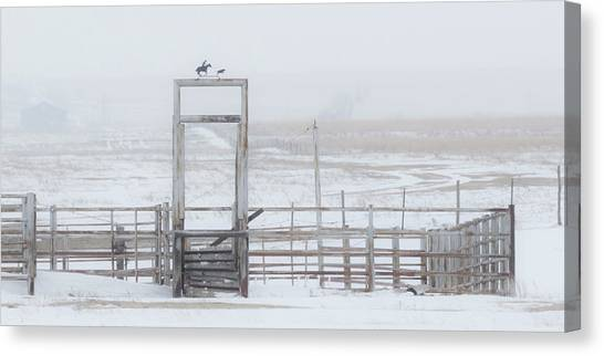 Canvas Print featuring the photograph Snow And Corral 01 by Rob Graham