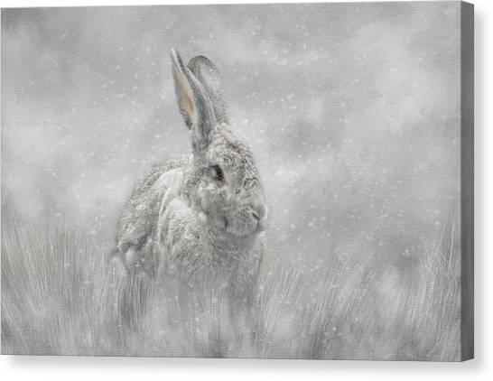 Snow Bunny Canvas Print