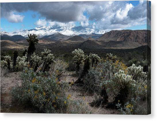 Canvas Print - Snow Day Southwest Style  by Saija Lehtonen