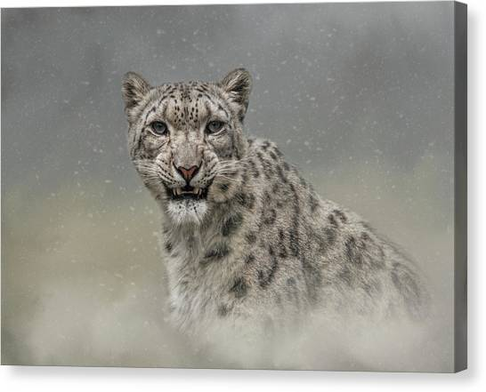 Snow Ghost Canvas Print